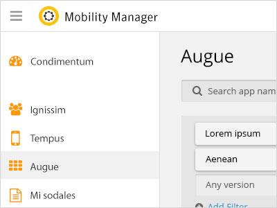 Symantec Mobility Manager Redesign
